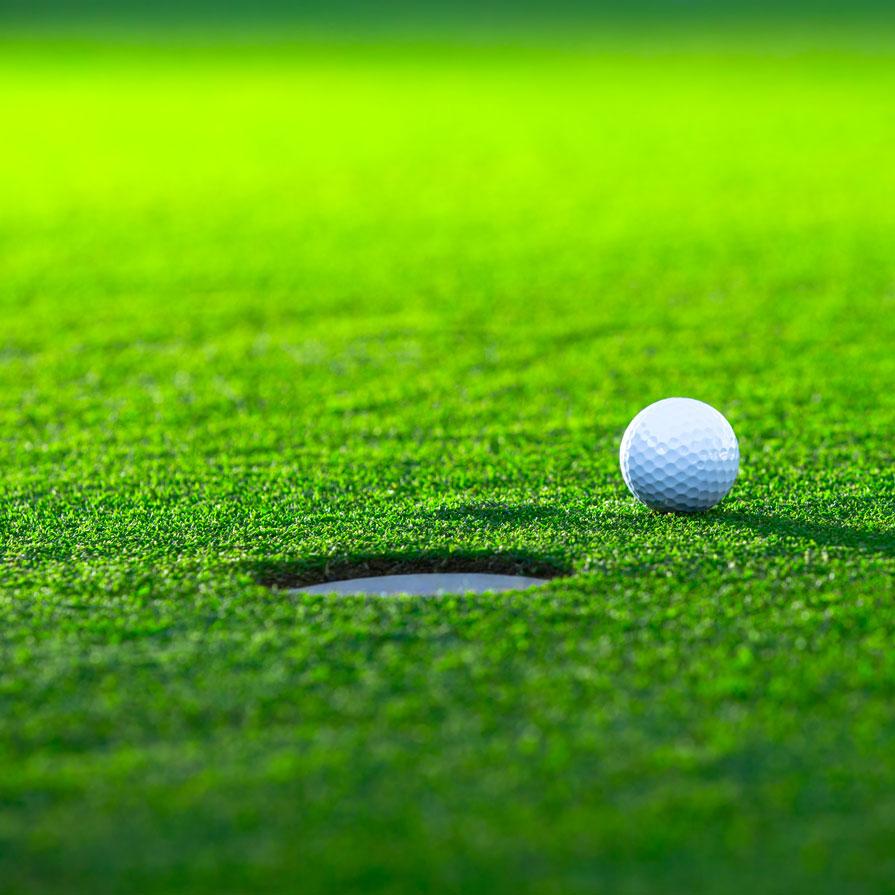 Case-golf.jpg