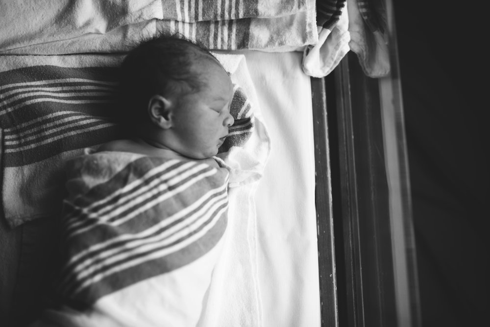 Everett Newborn Photographer
