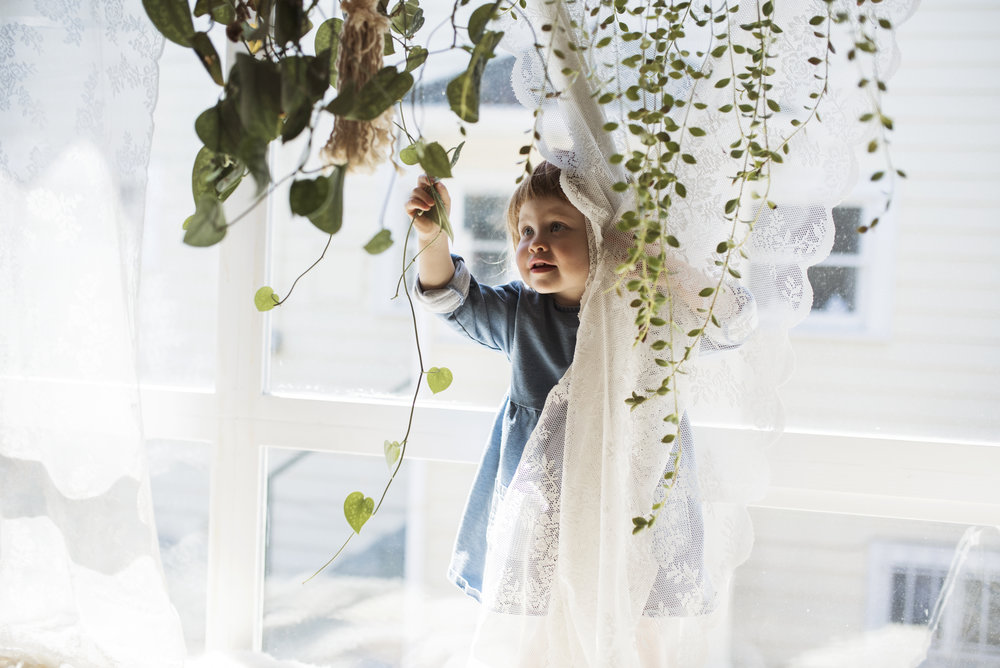 Seattle family photographer girl playing with indoor plants
