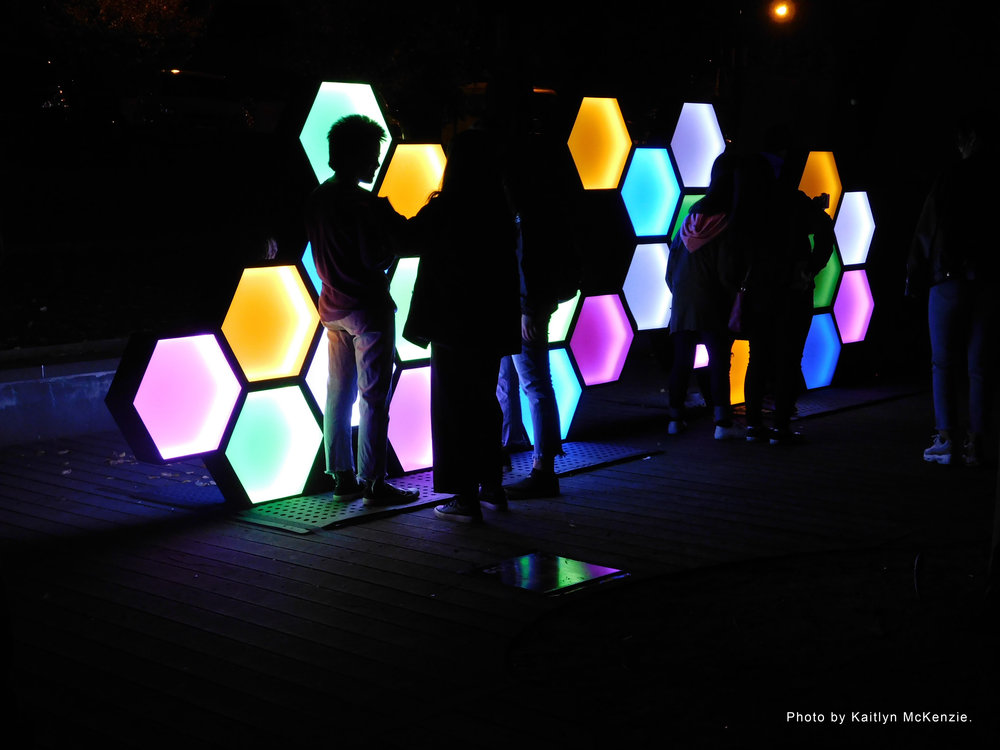 'Beta Bee' - Geelong After Dark