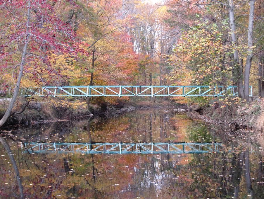 Jeremy Wayman -Bridge Across Autumn-.jpg