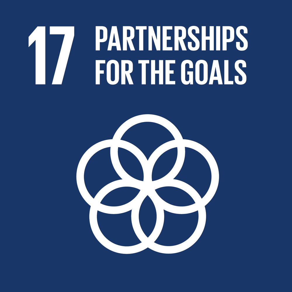 United Nations Sustainability Goal #17