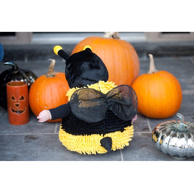 Halloween is just around the corner. Who are you going to BEE? #halloween #childrenphotography #torontophotographer #babyphotographertoronto