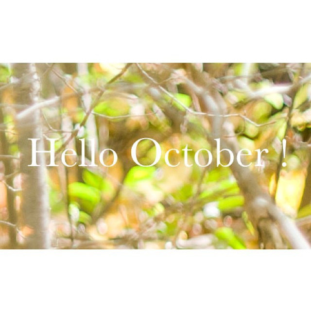 Hello October!!! #october #wedding #fall #engagement #fallcolors