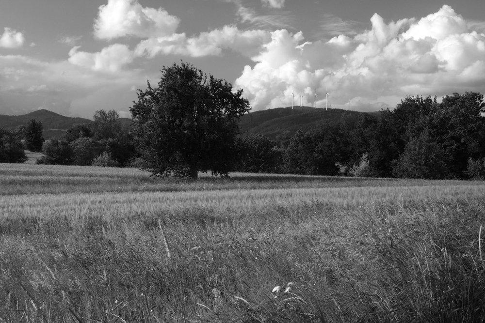 Landschaftsfotografie auf dem Dinkelberg in Blick Richtung Gerspach.