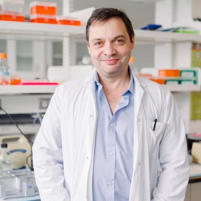 Давид Чеишвили , PhD   Cоучредитель