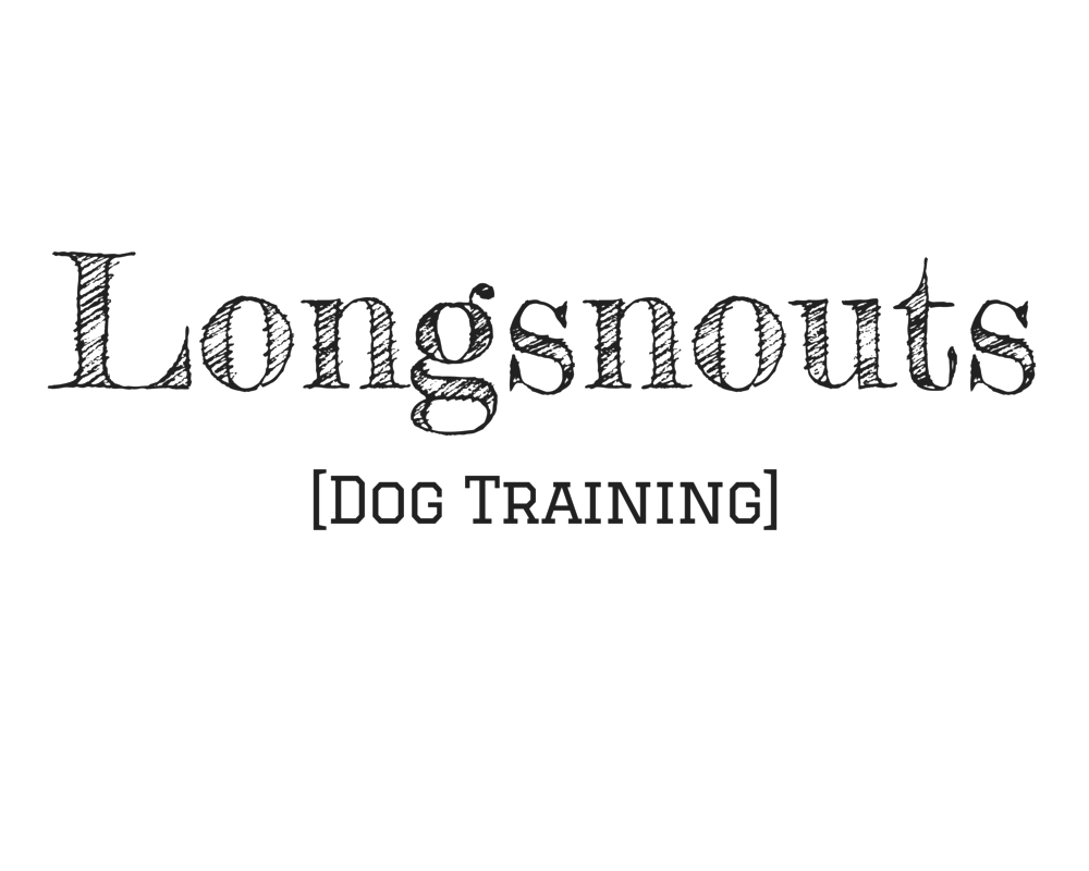 Longsnouts logo for print.png