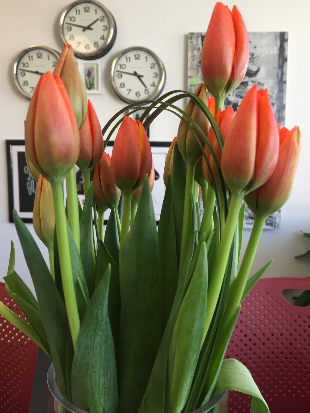 office-flowers-redwood-city.JPG