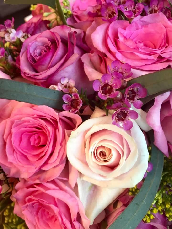 February Pink2.jpg