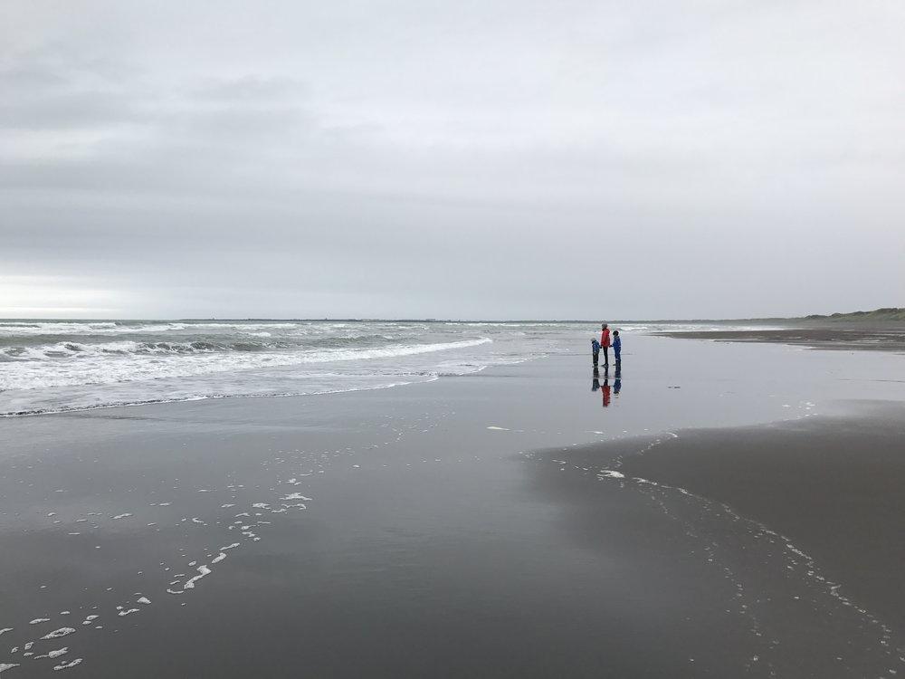 Black Sand Beach near Þorlákshöfn