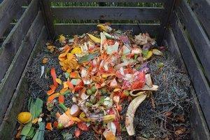 Compost Mt. Airy Philadelphia.jpg