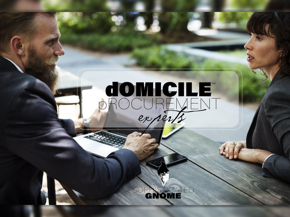 domicile procurement experts.jpg