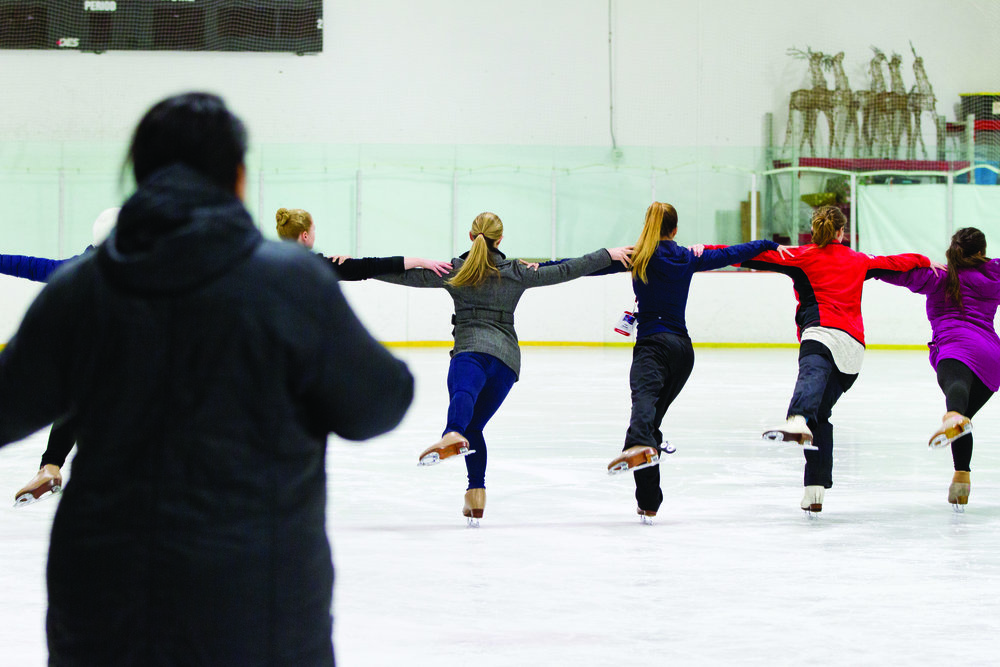 PROFESSIONAL SKATERS ASSOCIATION   The official continuing education and accreditation association for ice skating professionals.