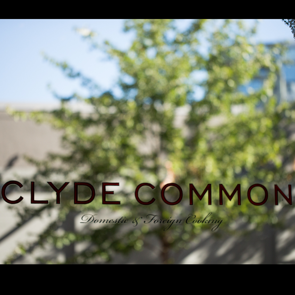 Clyde Common - July 11 2017 - 00155.png