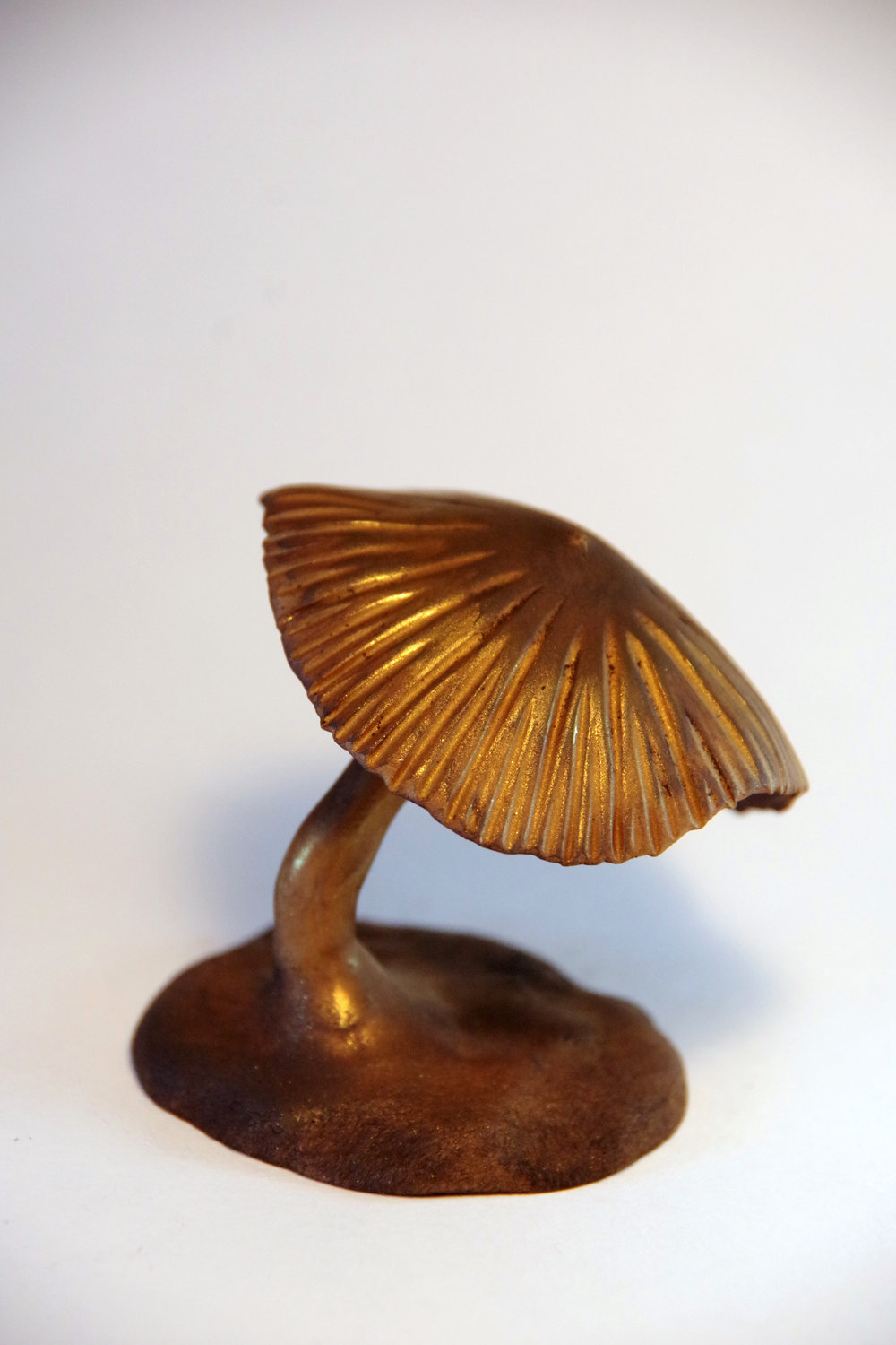 - This little guy is just a mushroom without a face, but he is awfully shiny