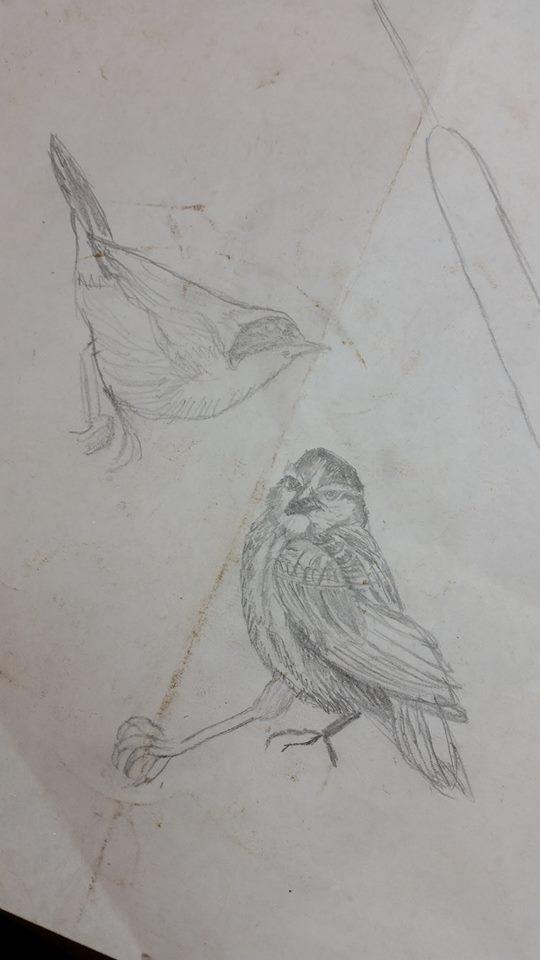 Bas Relief 1 birds 1.jpg