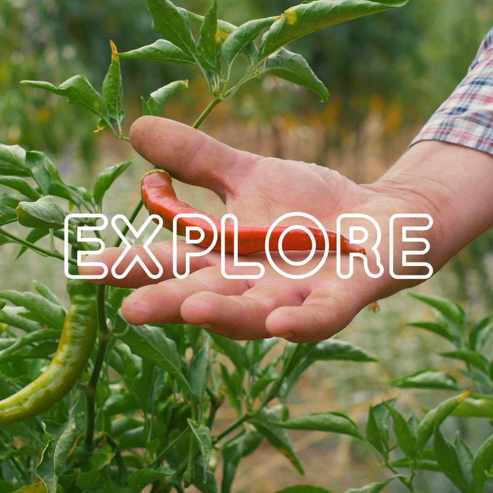 MYM_EP1_Explore.jpg