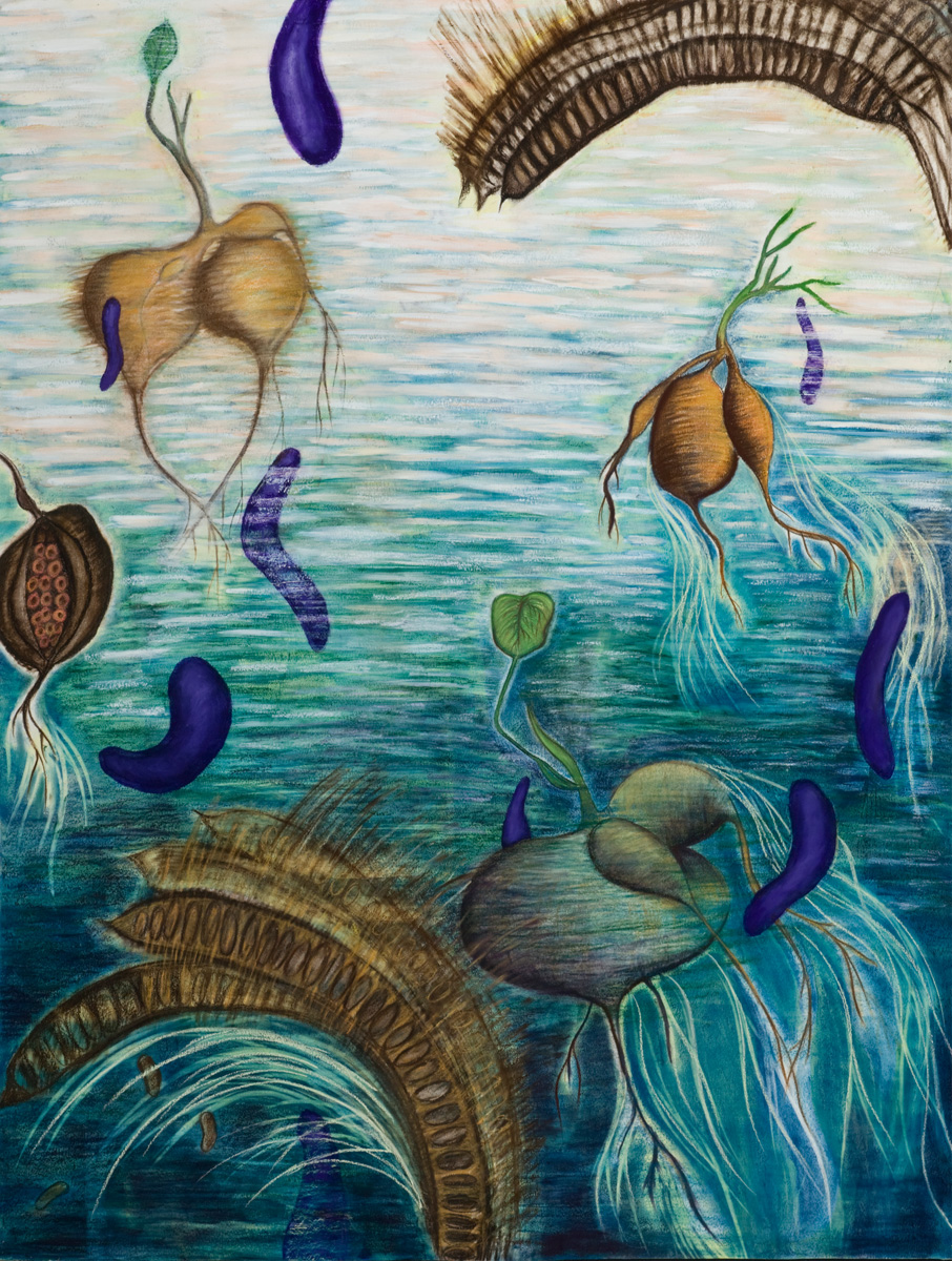 Surreal Landscape with Jicama Pastel, charcoal and acrylic on paper, 38 X 50 inches, 38 x 50 inches