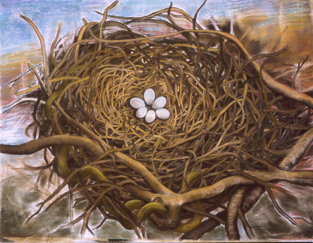 Nest Mixed media on canvas, 40 x 48 inches