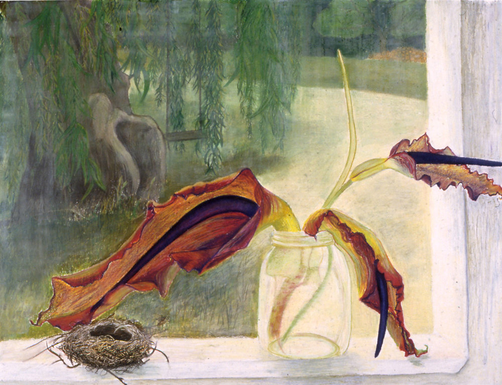 Voodoo Lily & Nest Pastel on paper, 38 X 50 inches