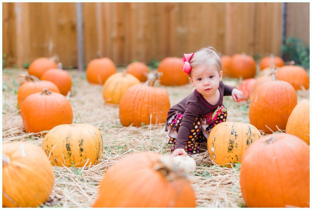 Pumpkin Patch Session_2927.jpg