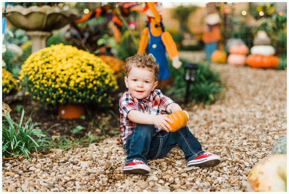 Pumpkin Patch Session_2955.jpg