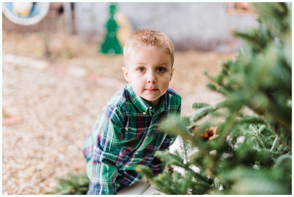 Christmas Tree Minis_3679.jpg