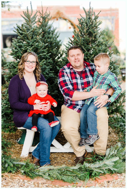 Christmas Tree Minis_3681.jpg