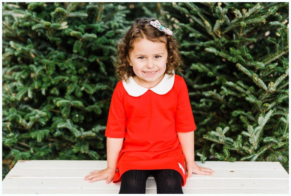 Christmas Tree Minis_3682.jpg