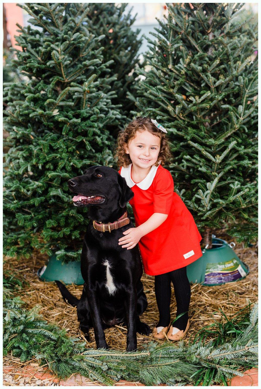 Christmas Tree Minis_3683.jpg