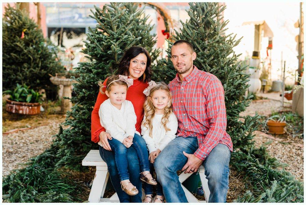 Christmas Tree Minis_3686.jpg