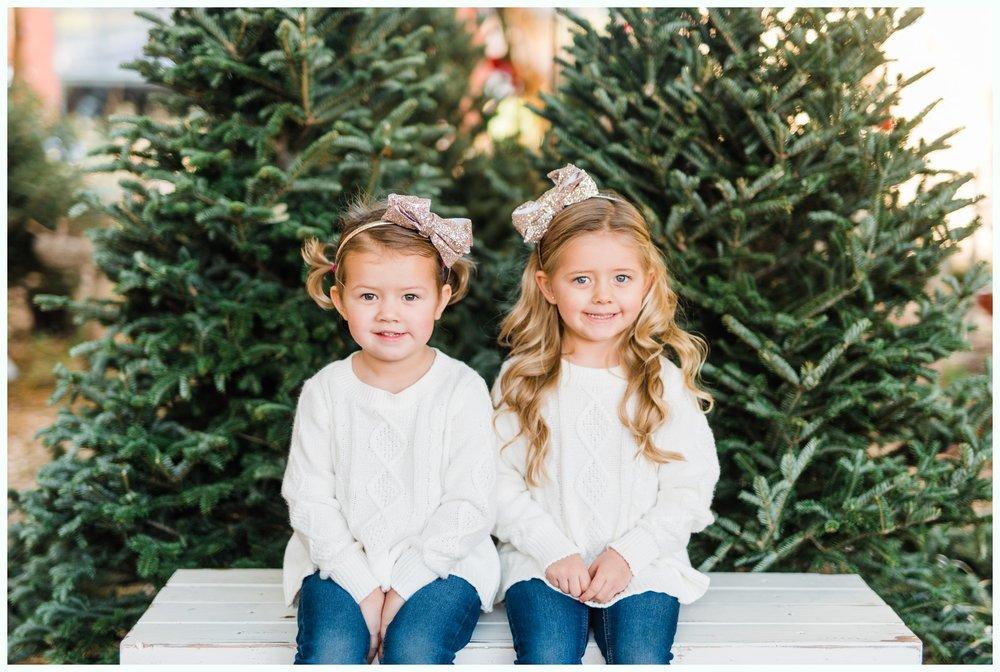 Christmas Tree Minis_3688.jpg