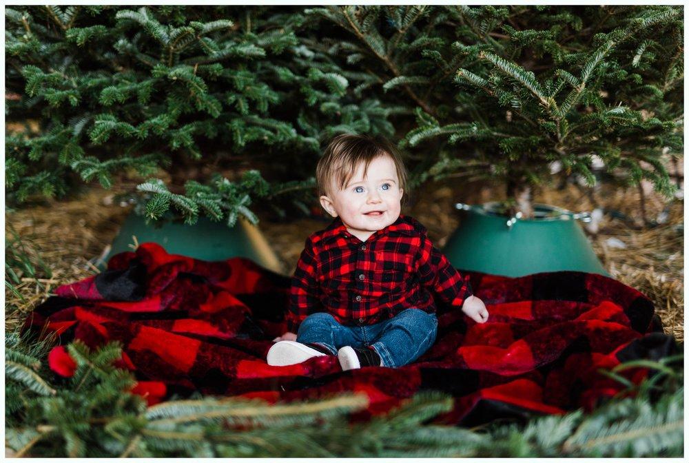 Christmas Tree Minis_3701.jpg