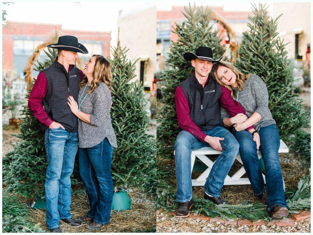 Christmas Tree Minis_3704.jpg