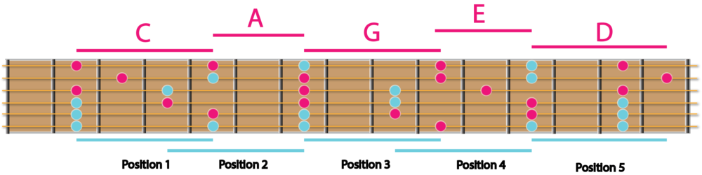 CAGED chord shapes laid over the positions of the pentatonic scale.....