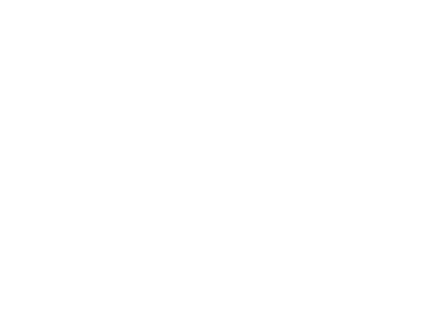 TwoFlyGuys Media