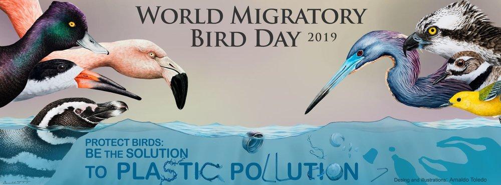World Migratory Bird Day 2019.jpg