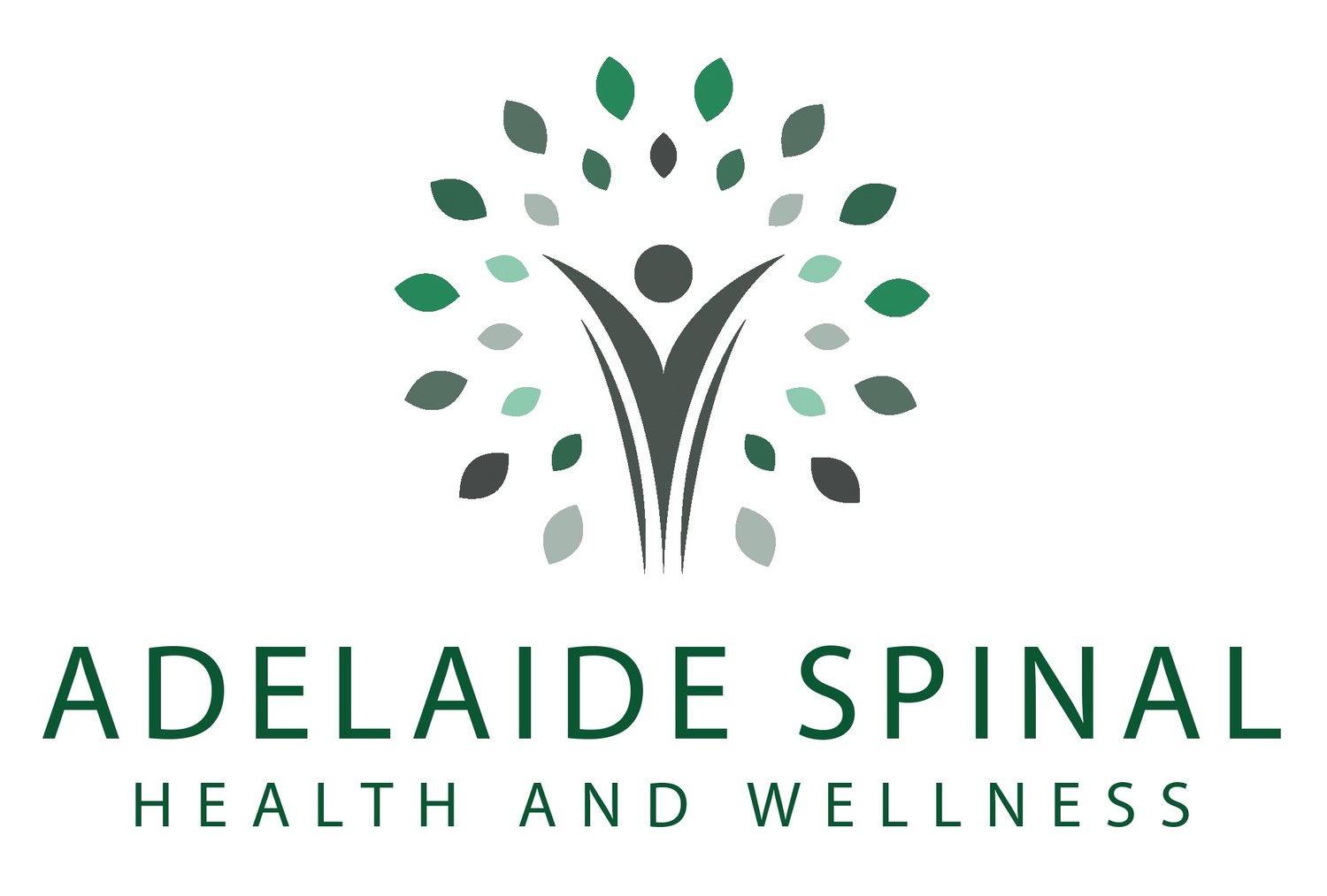 Adelaide Spinal Health and Wellness