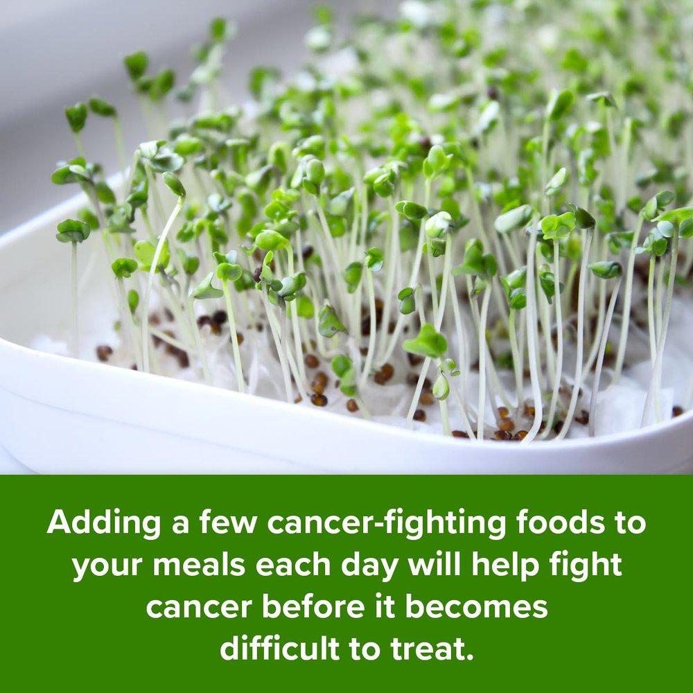 ăn rau mầm chống ung thư.jpg