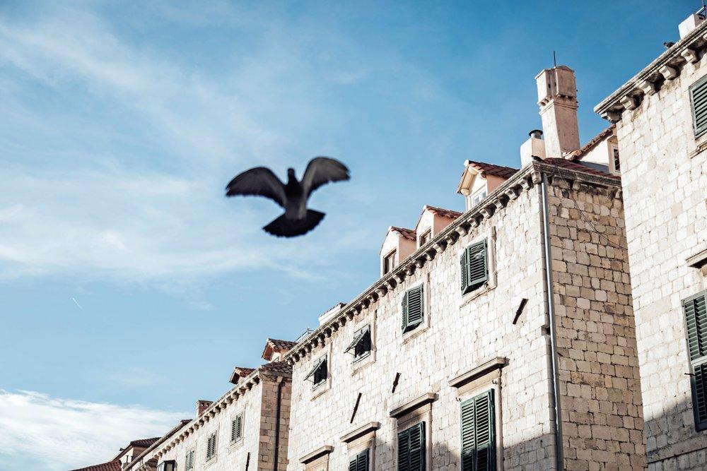 Travel_Photography_1_Dubrovnik-Croatia (38)-min.jpg