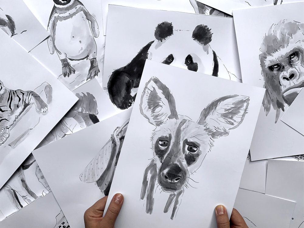 dog_hands_photo1.jpg