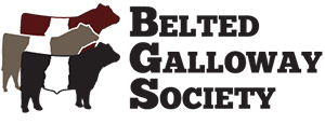 belted_galloway_society_logo_2015_300px.png