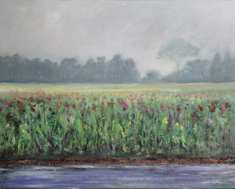 Riverbank and Meadow 2017