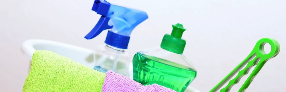 Harmful Household Products -