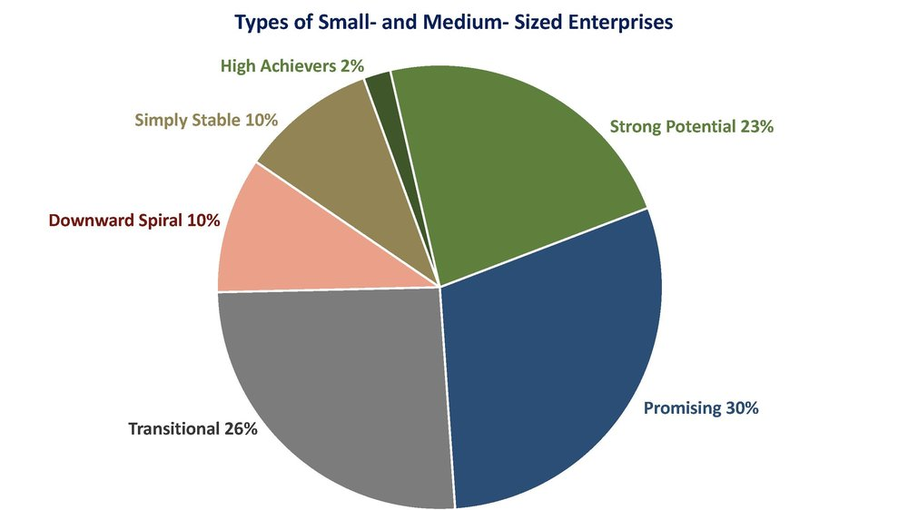 Types of Small and Medium Firms.jpg