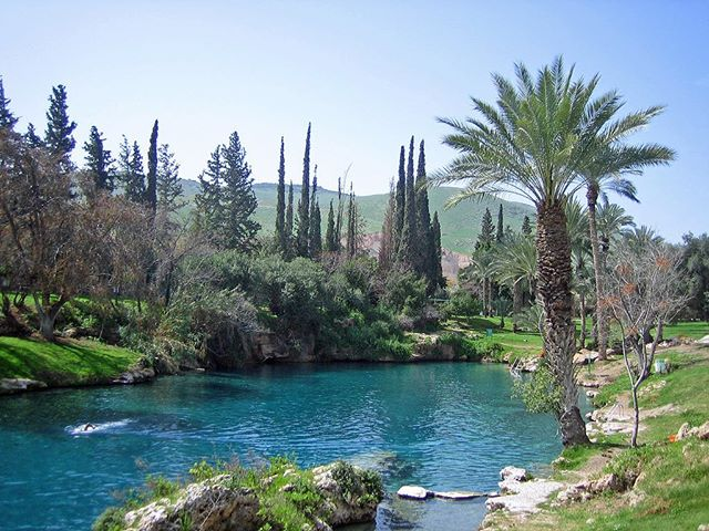 Gan Hashlosha, otherwise known as the Sachne, is undoubtedly one of the most beautiful places in Israel. Located in the Lower Galilee, some believe that Gan Hashlosha is the real-world location of the garden of Eden, and, once you visit, you might understand why. The main highlight of Gan Hashlosha are its beautiful pools shaded by lush palm trees and surrounded by green lawns, which are constantly 28 degrees Celsius year-round. The park also has an archaeology museum and tower and stockade and is popular with visitors who come to spend a day swimming and relaxing or to explore the history and admire the beauty it has to offer. #topeventsisrael #israel #sachne #ganhashlosha