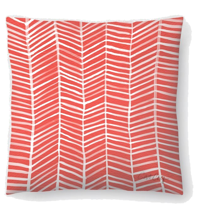 Wayfair coral pillow.png