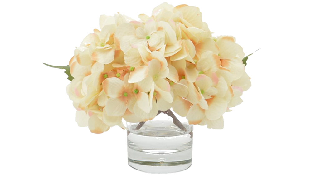 Wayfair hydrangeas in water.png