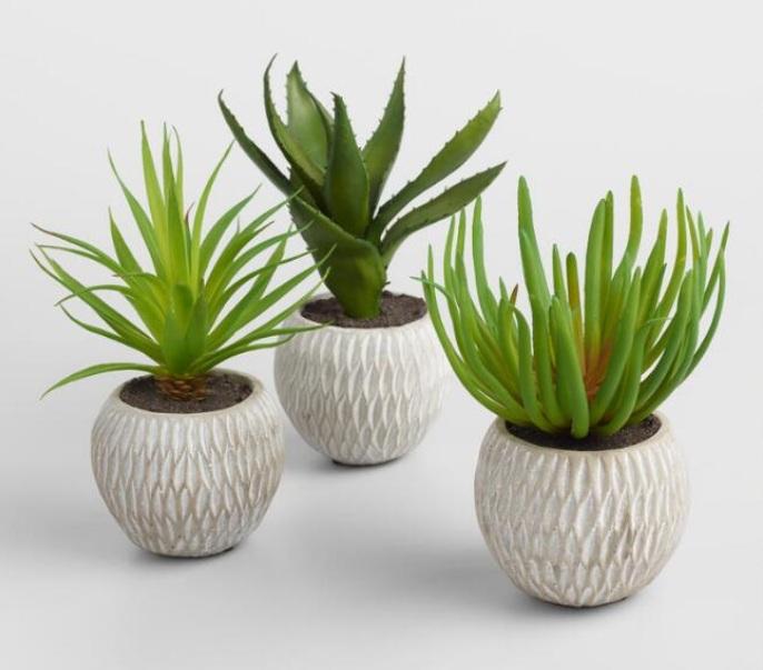 Faux Succulents in Etched Cement Pot