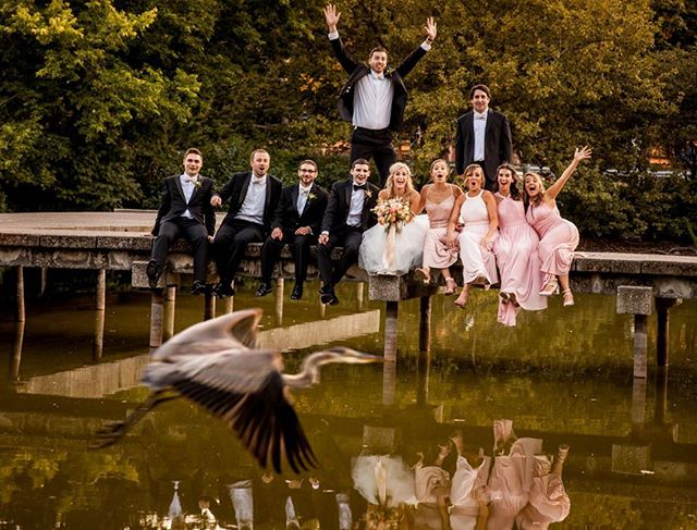 •it's not often that you get a blue heron to photobomb your bridal party photos, but, at the Nature Museum, it certainly is a possibility•